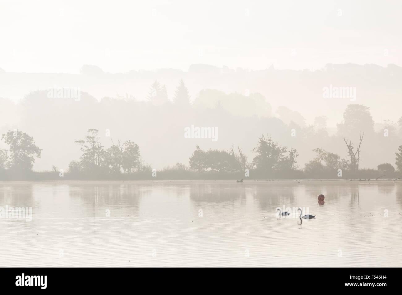 Misty amanecer sobre Castillo Semple Loch en Renfrewshire, Escocia, Reino Unido Foto de stock