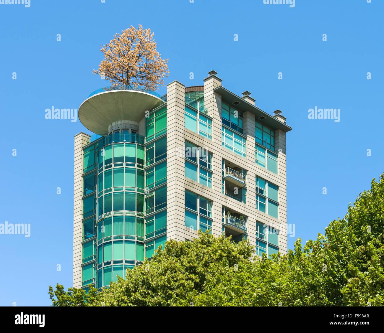 Eugenia Lugar Edificio De Apartamentos Con Pin Oak Tree En