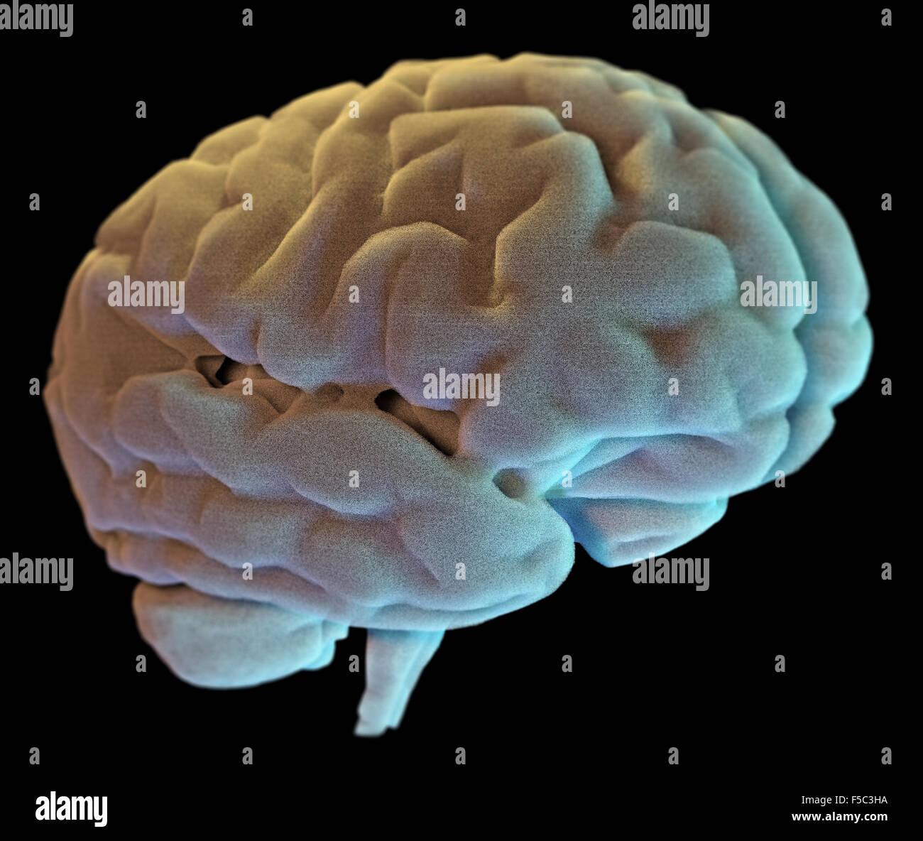 Ilustración del cerebro humano sobre fondo negro Imagen De Stock