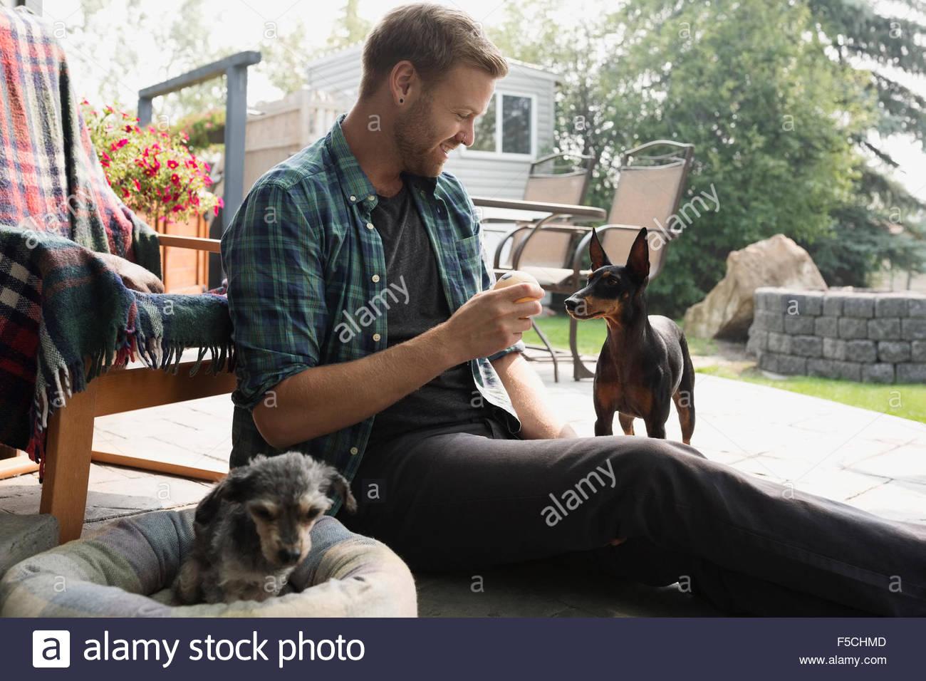 Hombre con pelota de tenis para perros en el patio Imagen De Stock