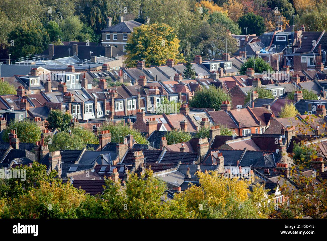 Los tejados entre los árboles de otoño en Crouch End,Hornsey, Londres N8 Imagen De Stock