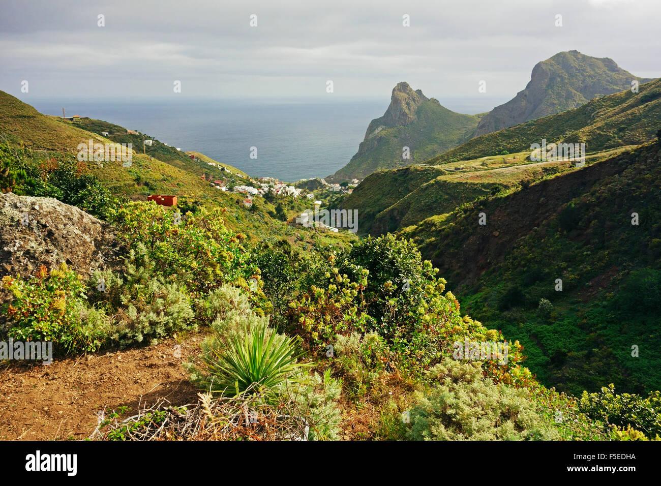 Aldea de Taganana, las montañas de Anaga, Tenerife, Islas Canarias, Atlántico, Europa Imagen De Stock