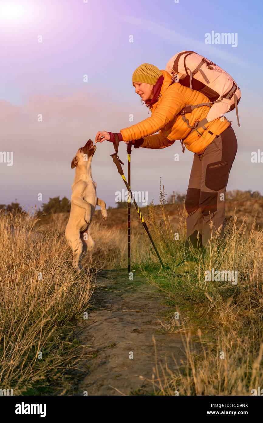 Excursionista femenina y perro en camino Imagen De Stock