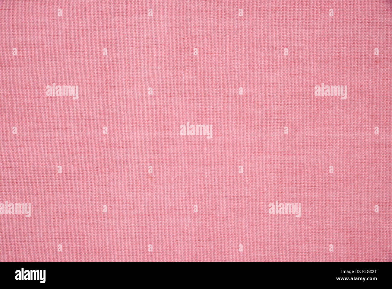 Detalle de rosa alfombrilla fondos Imagen De Stock