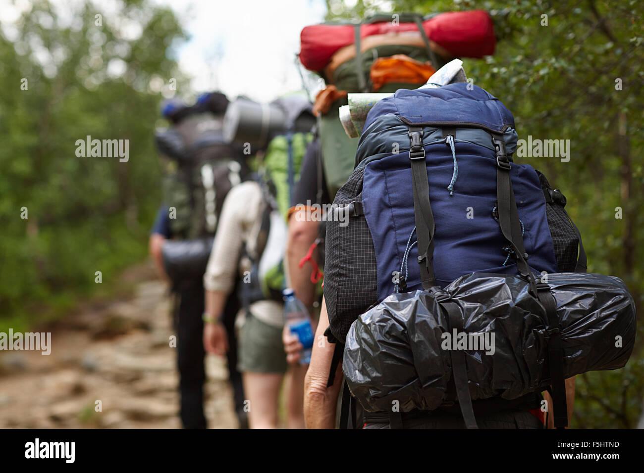 Suecia, Jamtland, personas con mochilas senderismo Imagen De Stock
