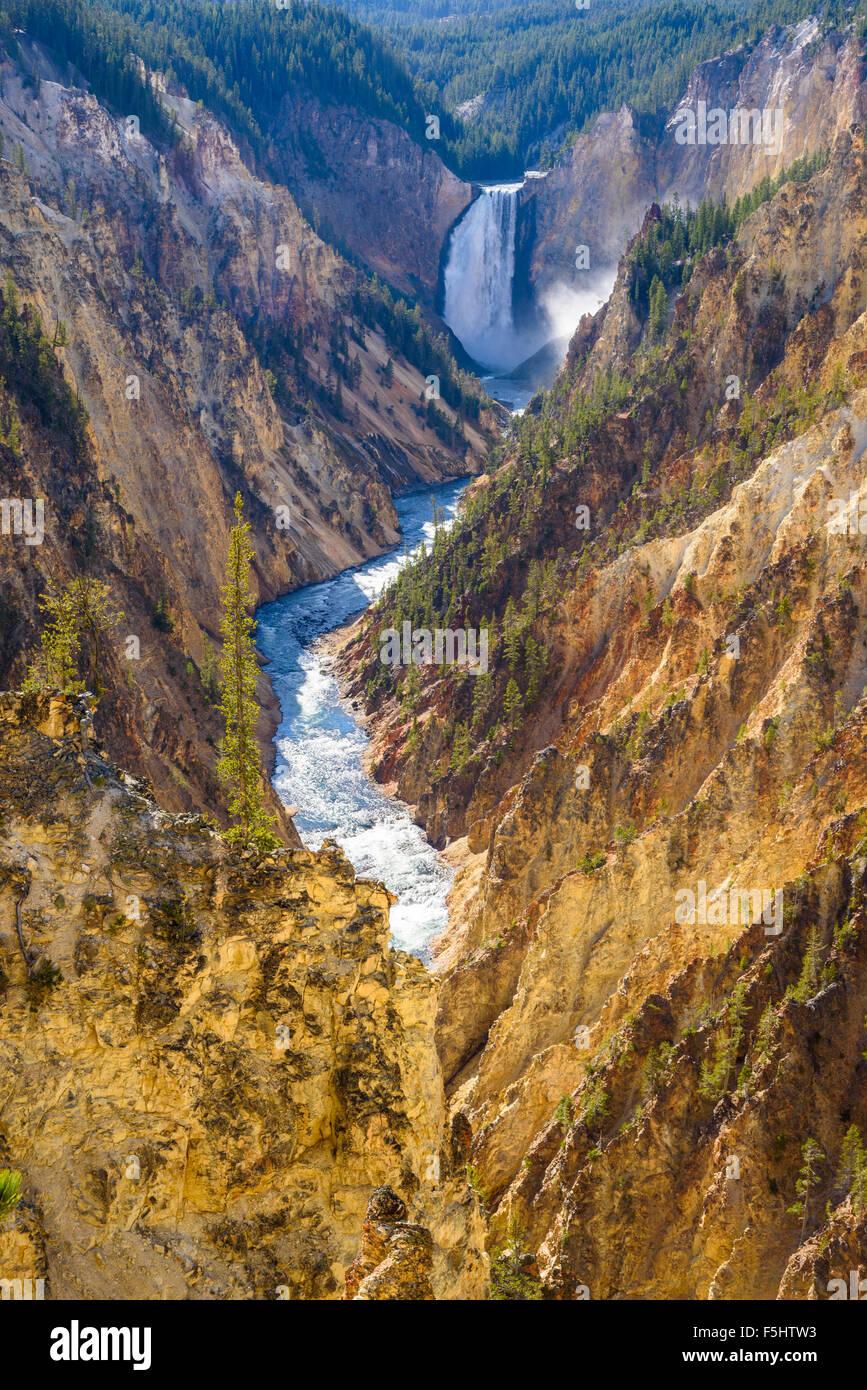 Lower Falls y el Gran Cañón del Yellowstone, desde el punto de artistas, el Parque Nacional Yellowstone, Imagen De Stock