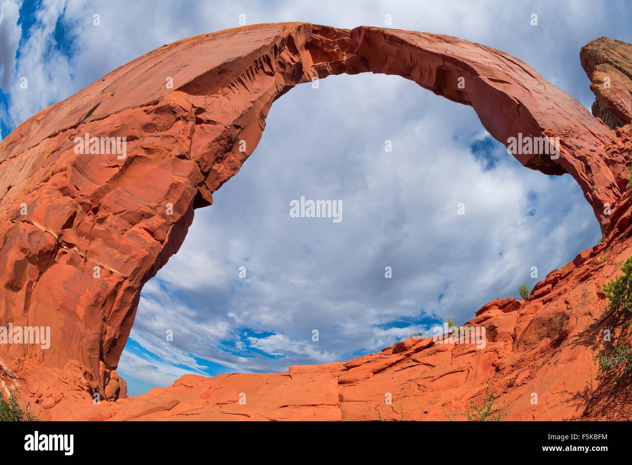 Royal, o arco, Gregg Wildlands Navajo, Arizona Luckachukai montañas Imagen De Stock