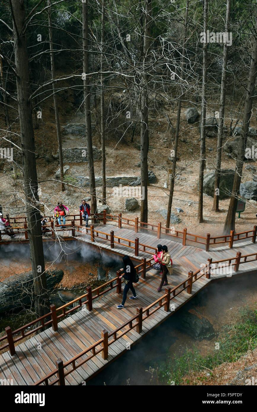 Jardín botánico de Beijing redwoods metasequoia exhiben pasarela de madera pathway protección conservación Floral Foto de stock
