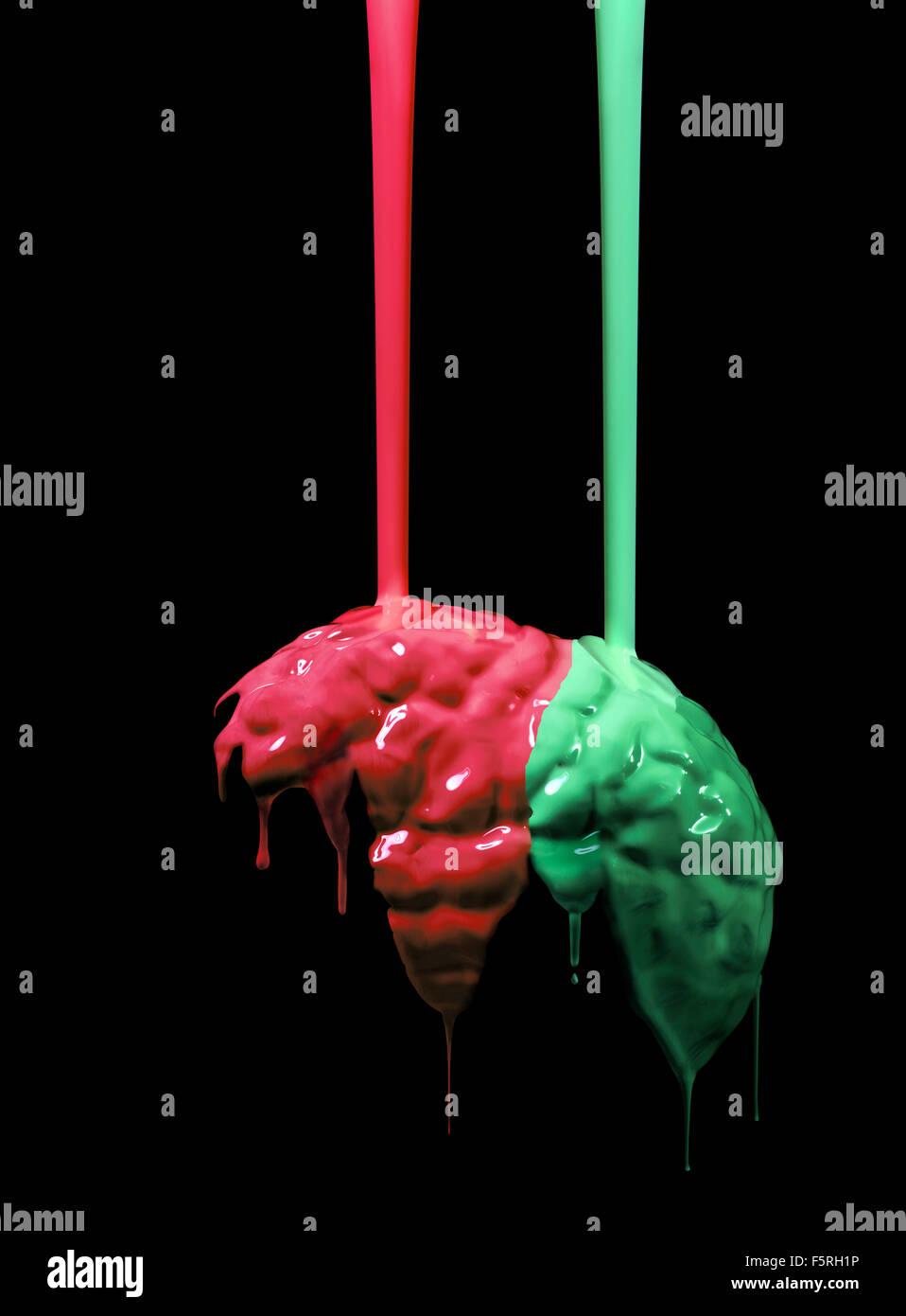 Foto de estudio de pintura roja y verde se vierte sobre un modelo de cerebro humano Imagen De Stock