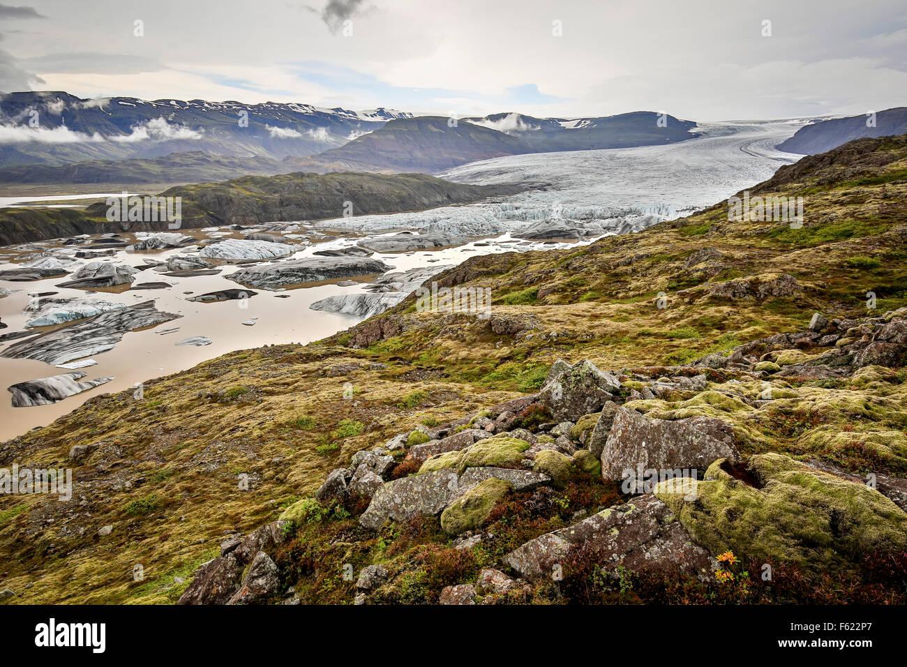 Hoffellsjokul glaciar y los icebergs en la laguna glaciar, el Parque Nacional Vatnajokull, Islandia Imagen De Stock
