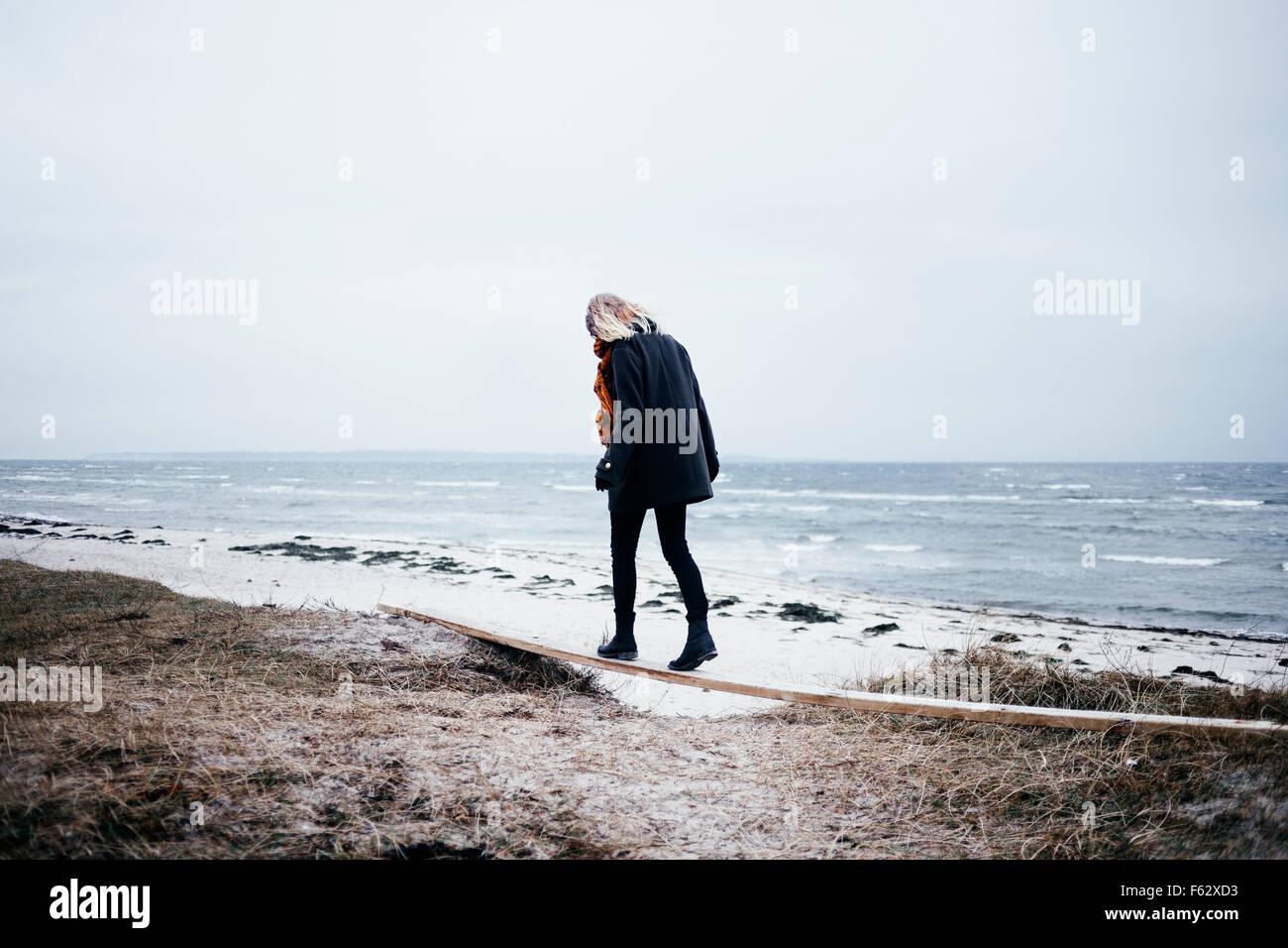 Vista trasera de la longitud completa de la mujer joven de equilibrio en la madera en la playa Imagen De Stock