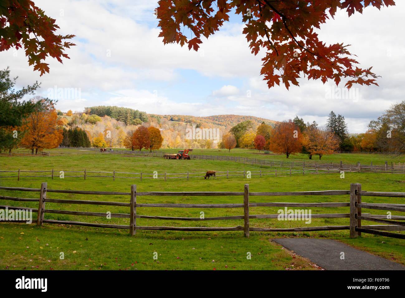 Billings Farm & Museum, Woodstock, Vermont, Nueva Inglaterra, EE.UU. Imagen De Stock