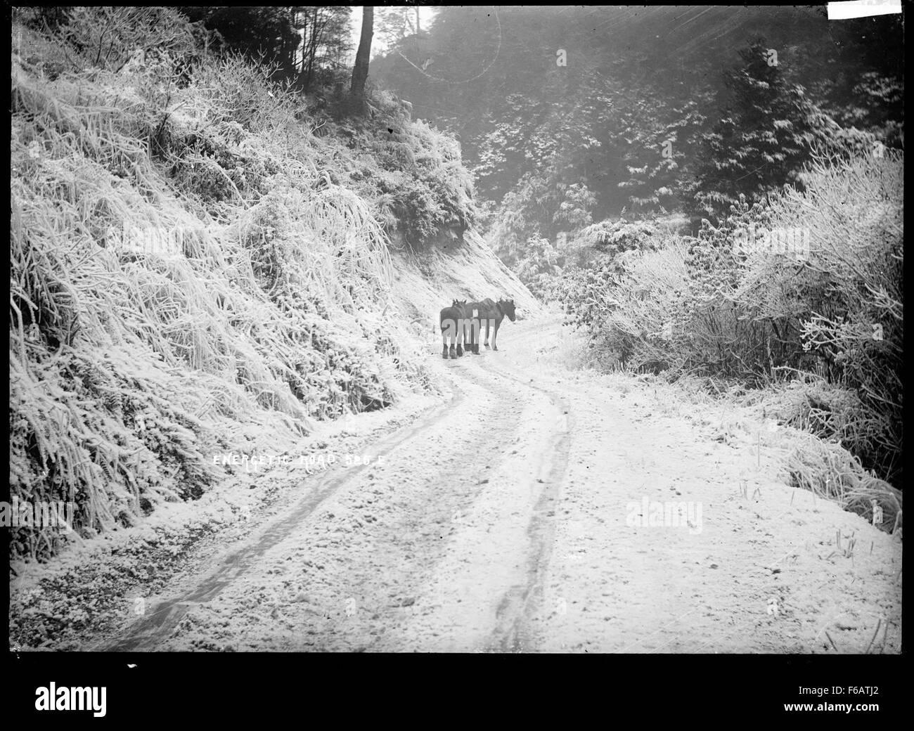 Vista de enérgico Road, cerca Inangahua Foto de stock