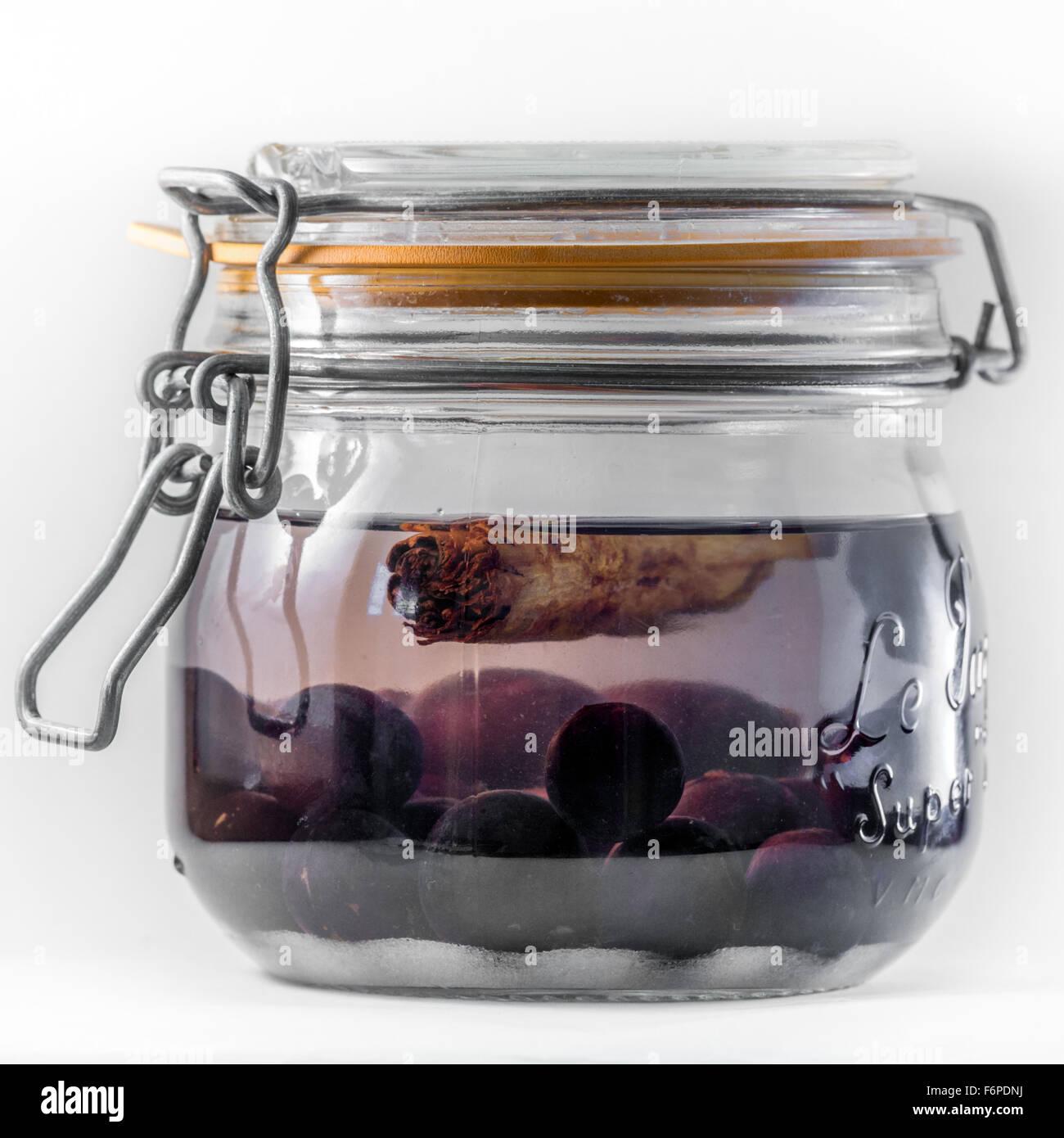 Día 1 Haciendo endrinas (jar que contiene kilner Gin gin, endrinas, azúcar, canela) Foto de stock