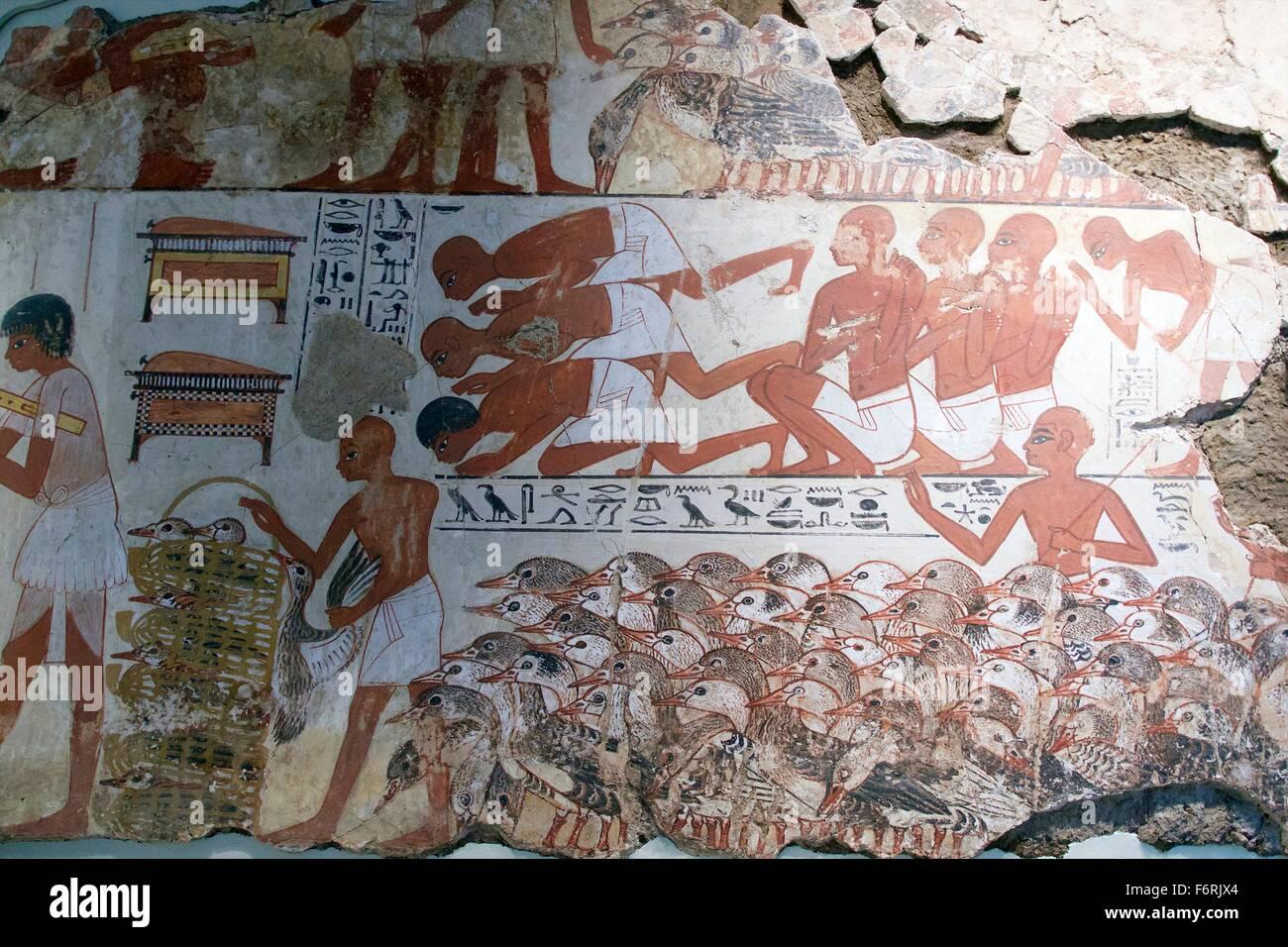 Visualización Nebamun gansos y ganado, tumba-capilla decoración, British Museum, Londres, Reino Unido. Imagen De Stock
