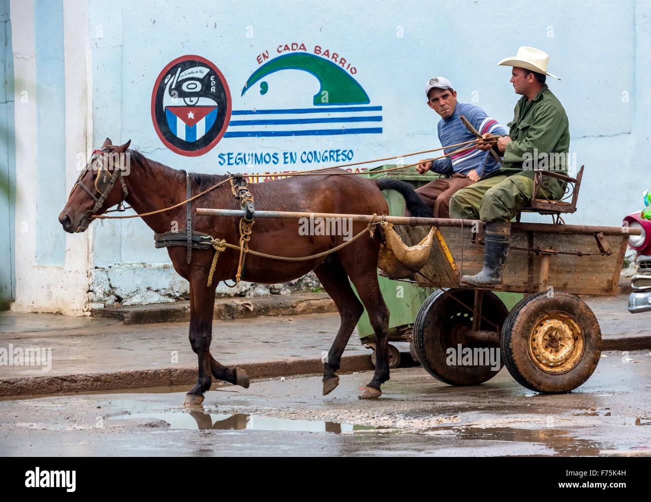 Buggy, compañeros, dos einspänniges granjero Cubano Cubano, transporte, Viñales, Cuba, Pinar del Imagen De Stock