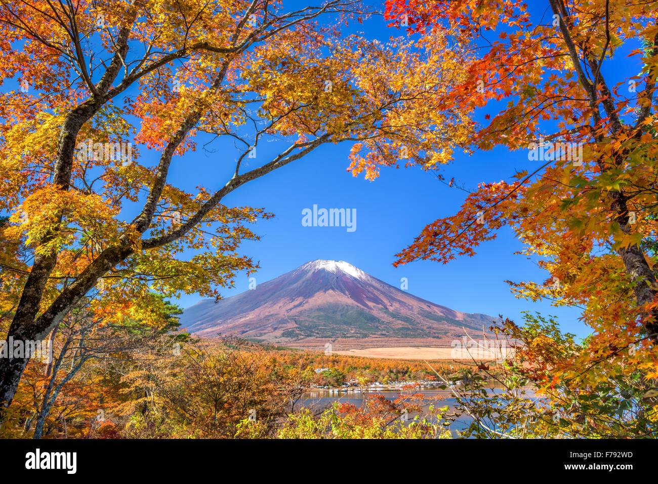 Mt. Fuji, Japón desde el lago Yamanaka en otoño. Foto de stock