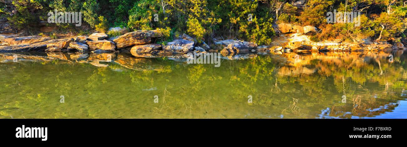 Billabong de agua dulce en el Real Parque Nacional de NSW, Australia en vistas panorámicas aún estanque Imagen De Stock