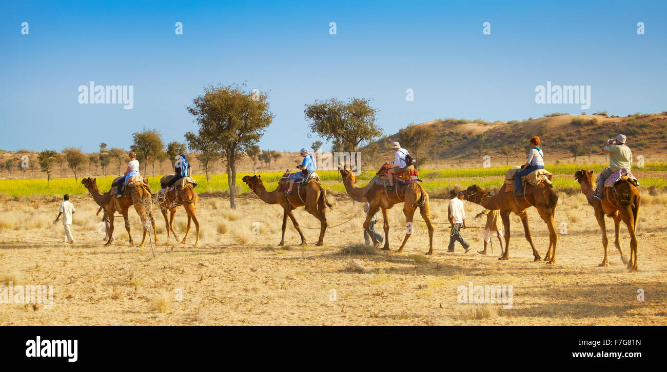 Caravana de camellos safari paseo con los turistas en el desierto de Thar, cerca de Jaisalmer, India Foto de stock