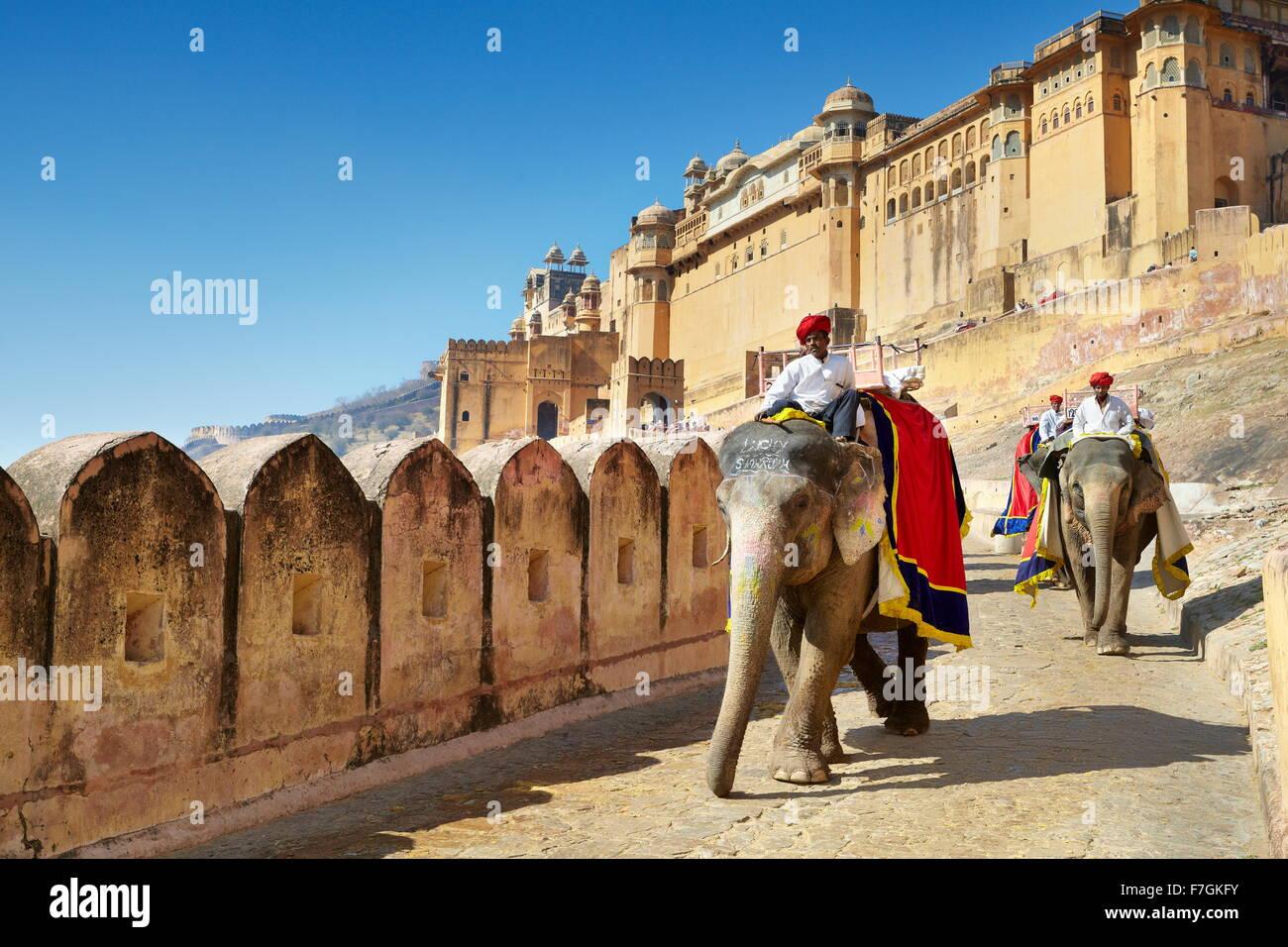 Jaipur - elefante (Elephas maximus) que regresan de la Jaipur Fuerte Amber, Rajasthan, India Imagen De Stock