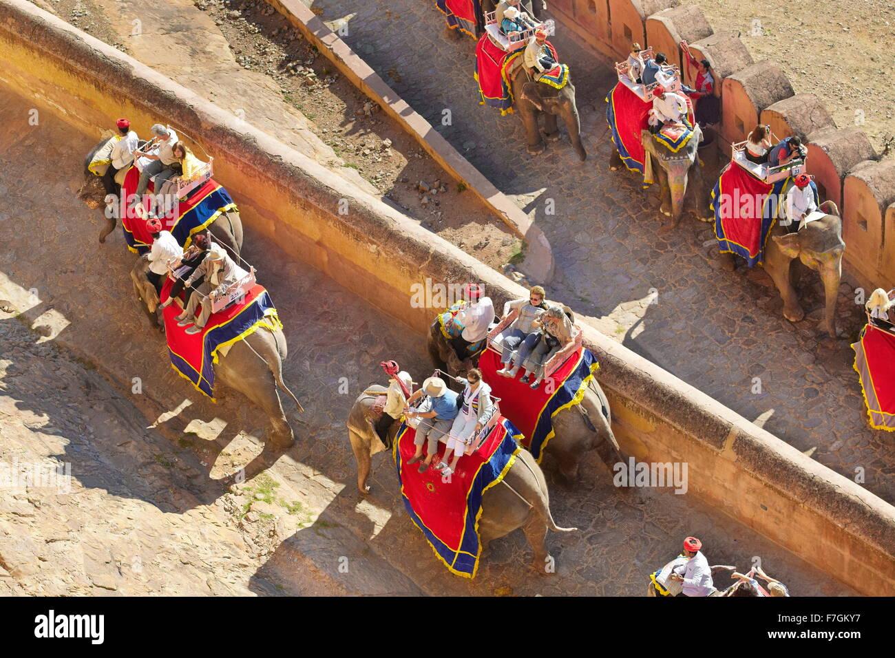 Los elefantes llevando turistas a El Fuerte Amber en Jaipur, Rajasthan, India Imagen De Stock