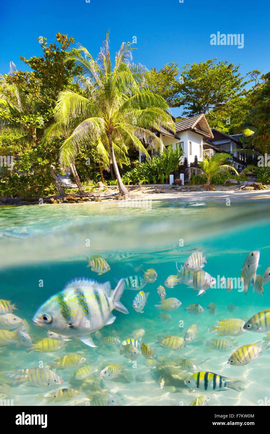 El paisaje tropical de la isla de Ko Samet submarina con vista al mar con peces, Tailandia, Asia Foto de stock