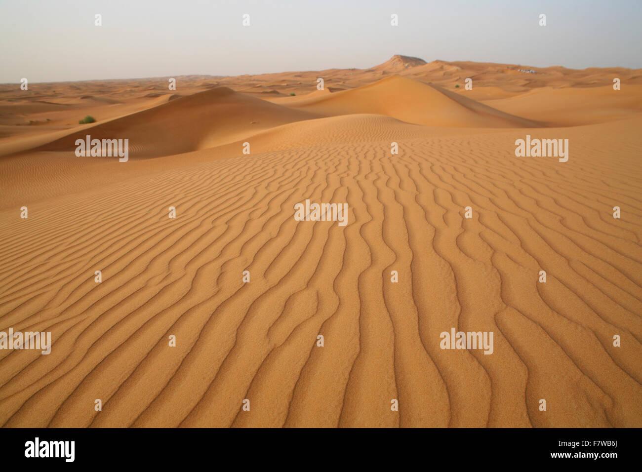 Safari por el desierto, Dubai, Emiratos Árabes Unidos. Imagen De Stock