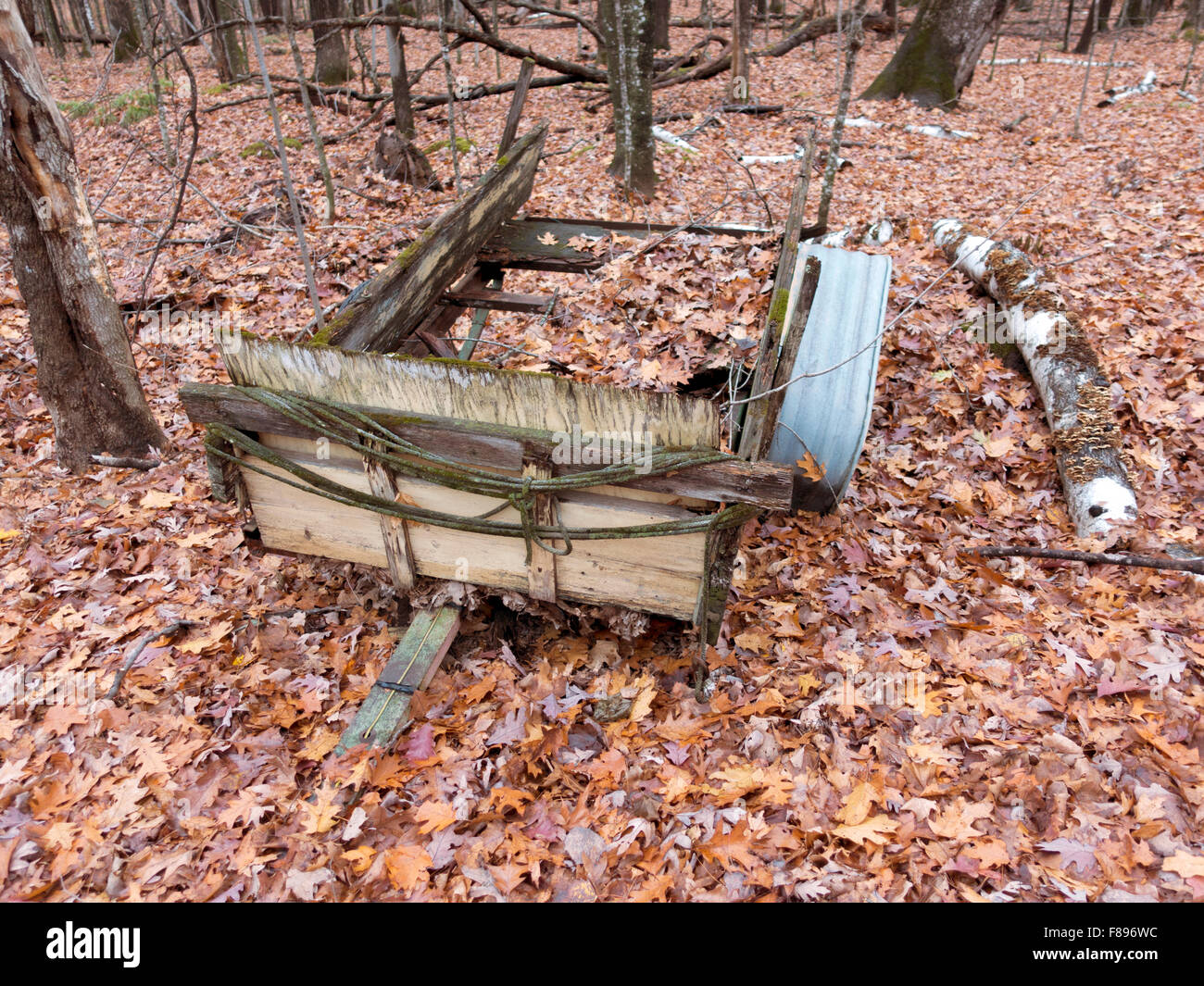 Remolque de madera colapsado fundiéndose en los bosques y las hojas de otoño. Cumberland Wisconsin WI USA Foto de stock
