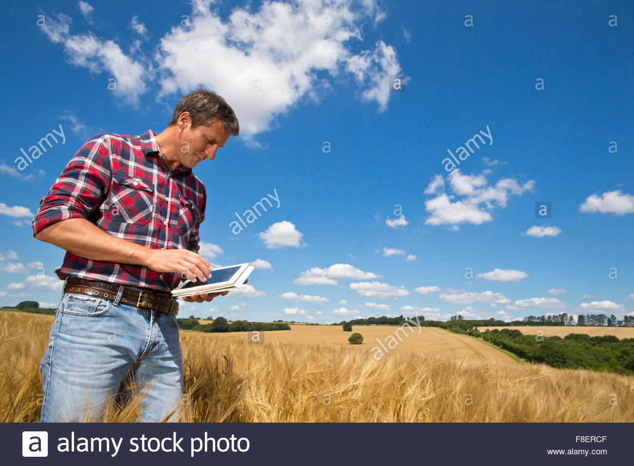 Agricultor usando tableta digital rural en un soleado día de campo de cultivos de cebada en verano Imagen De Stock