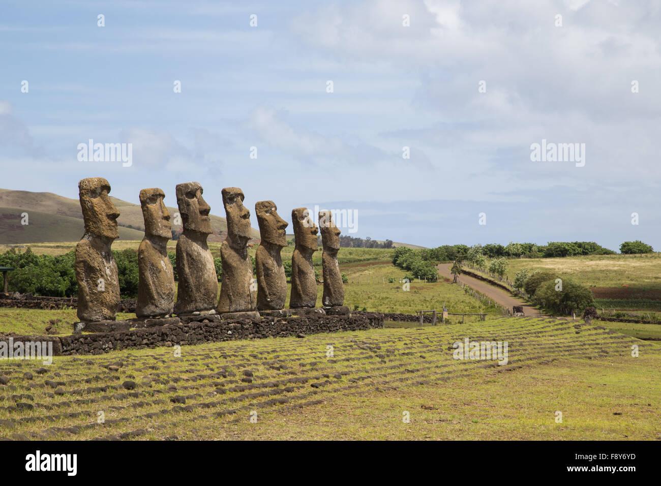 Fotografía de los moais a Ahu Akivi en Isla de Pascua en Chile. Imagen De Stock