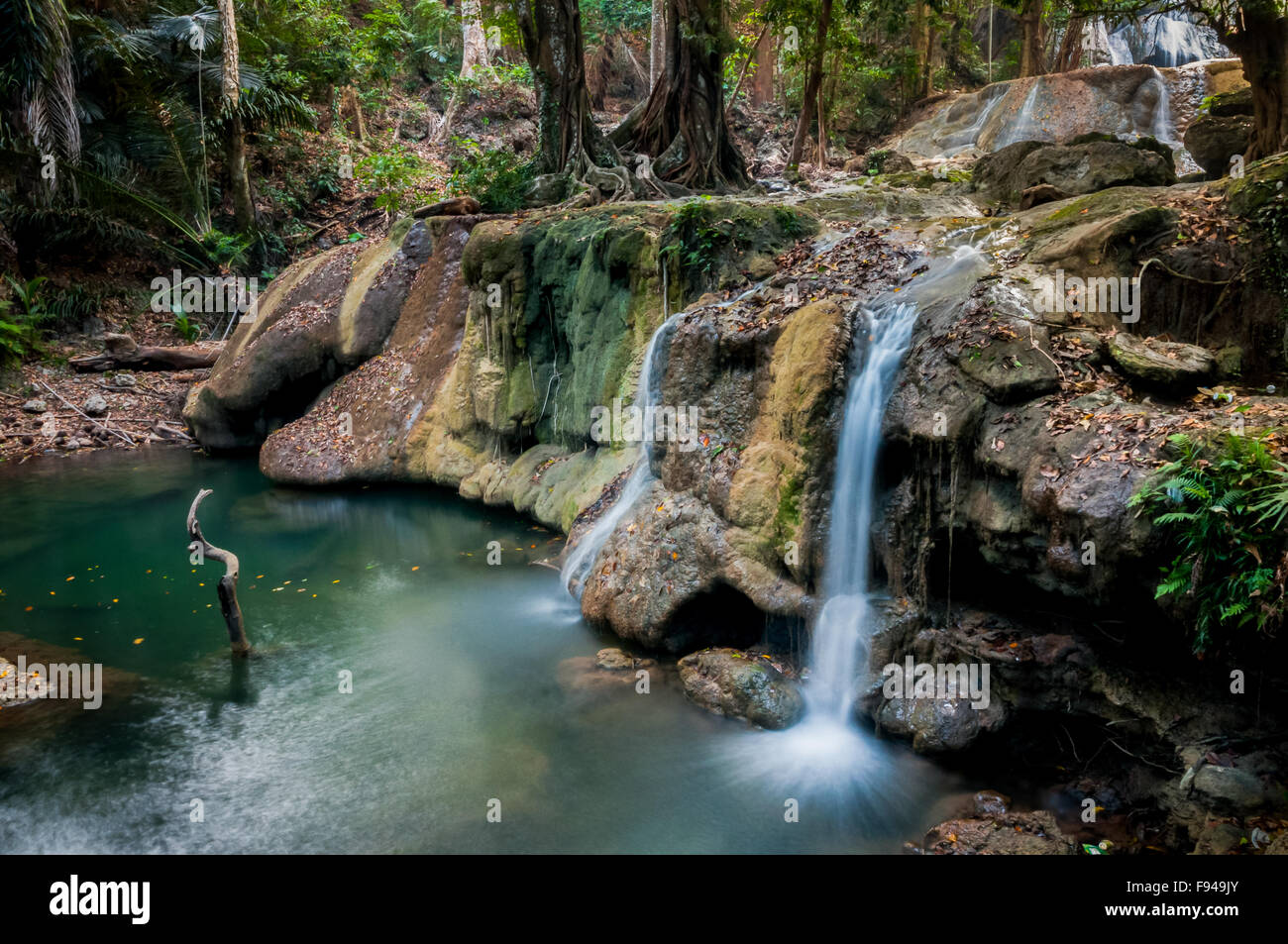 Los manantiales de agua en el bosque tropical. Imagen De Stock
