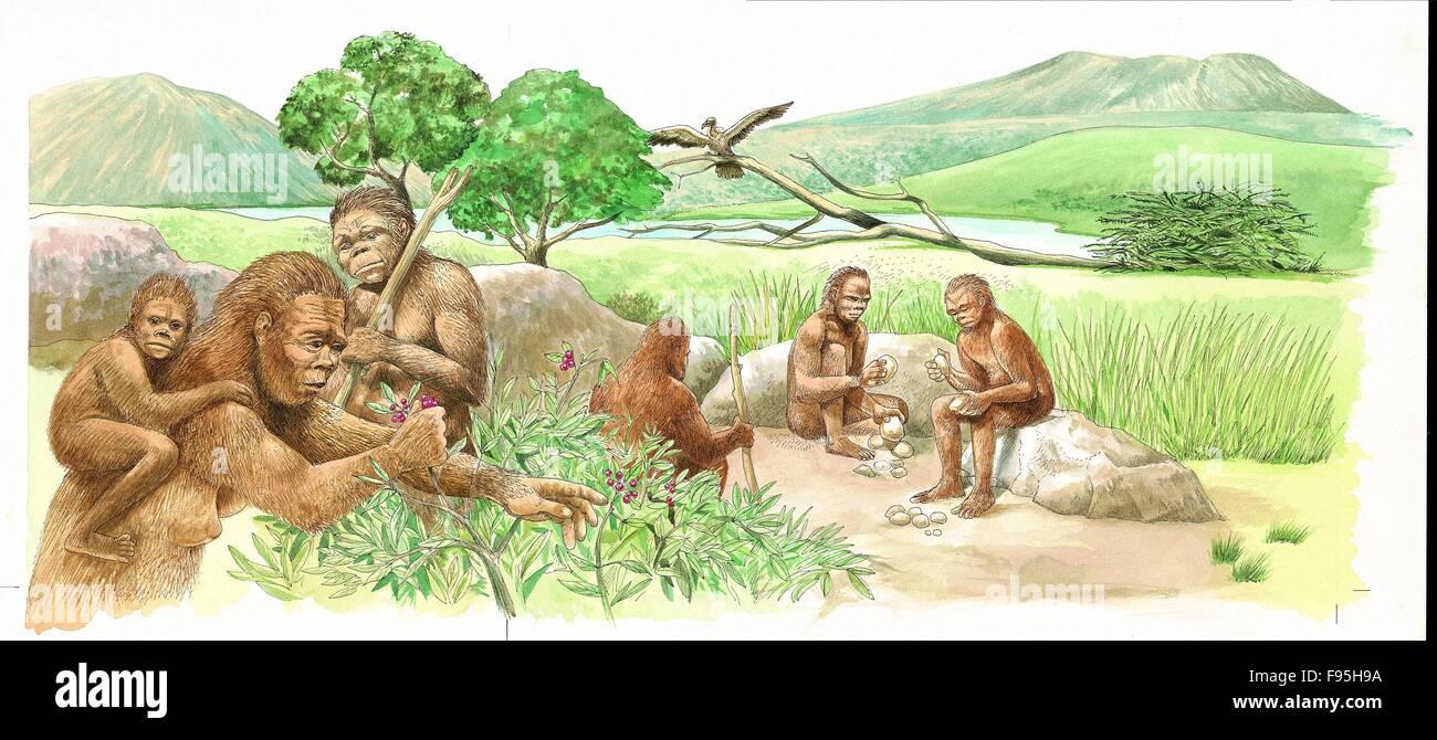 Los primeros seres humanos. Imagen De Stock