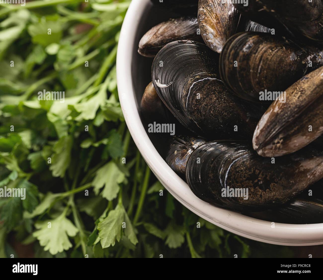 Mejillones listos para ser cocinados presentados con algunos de sus ingredientes Foto de stock
