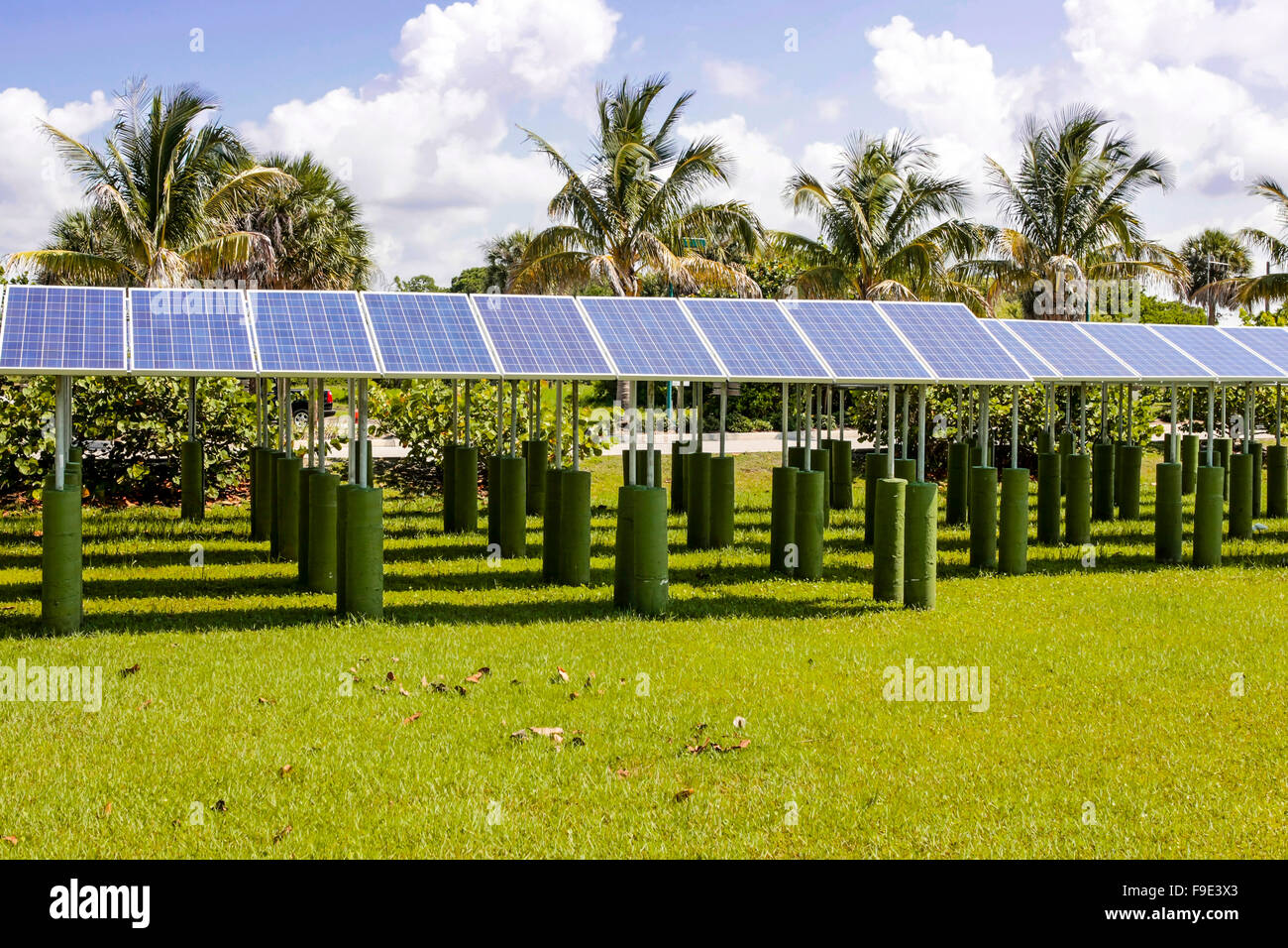 Filas de paneles solares apuntando hacia arriba el cielo soleado a lo largo de la Florida Imagen De Stock