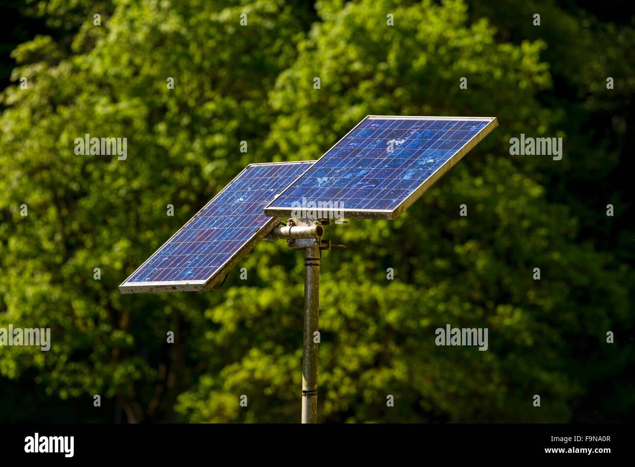 Paneles solares en la parte delantera de arbustos verdes, la energía del sol Imagen De Stock
