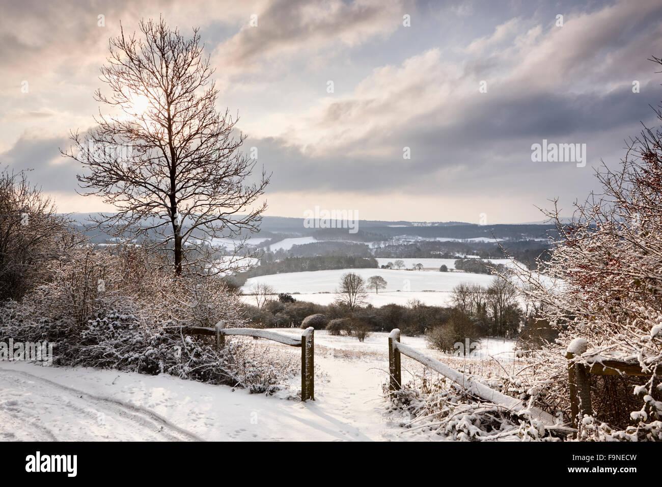 El sol empieza a romperse a través de la nube invernal en la fría mañana, Newlands Corner Foto de stock