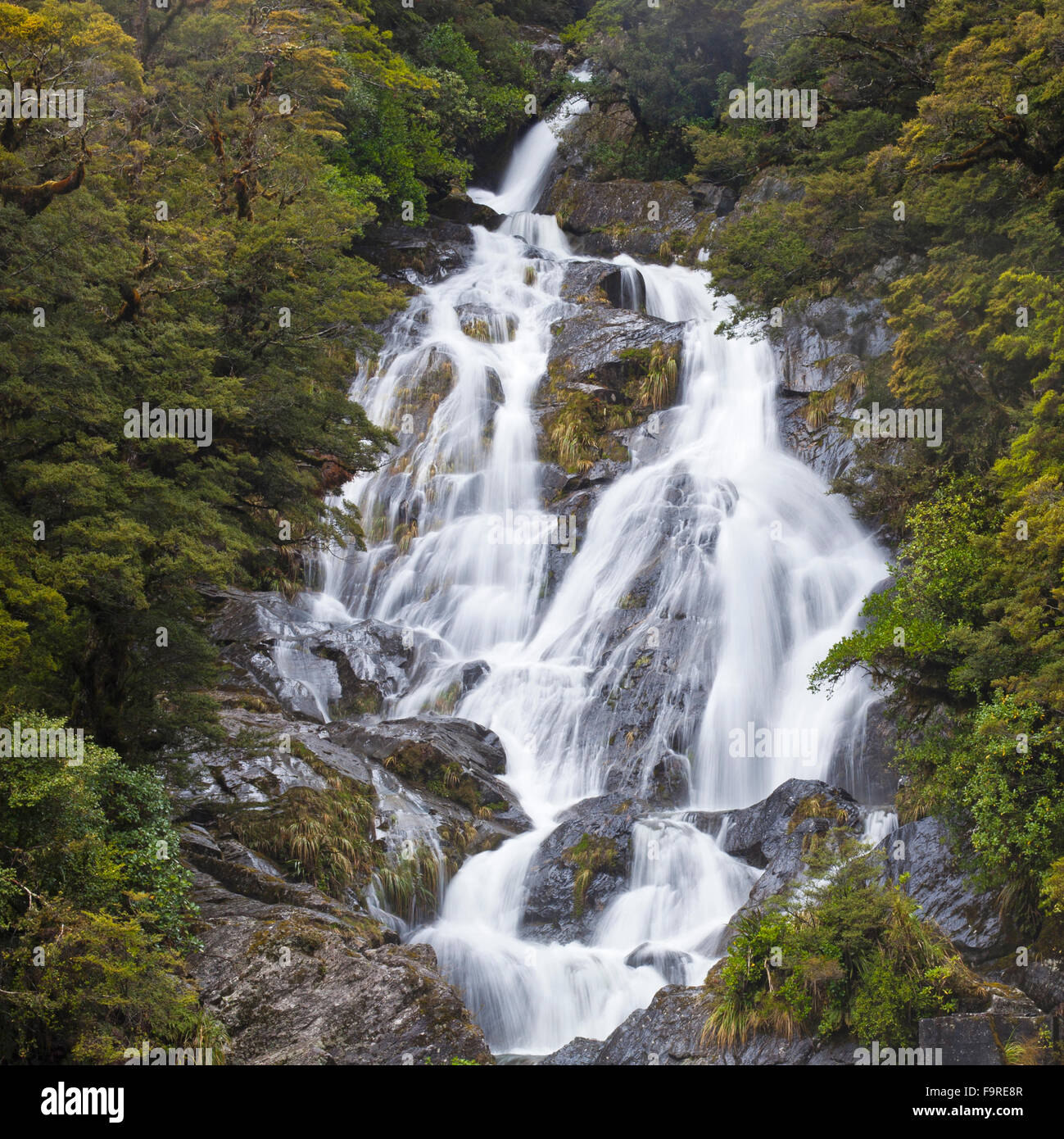 Castillo de popa Falls, el Parque Nacional de Mt aspirantes , Haast Pass, región de la Costa Oeste (Isla del Sur), Nueva Zelanda Foto de stock