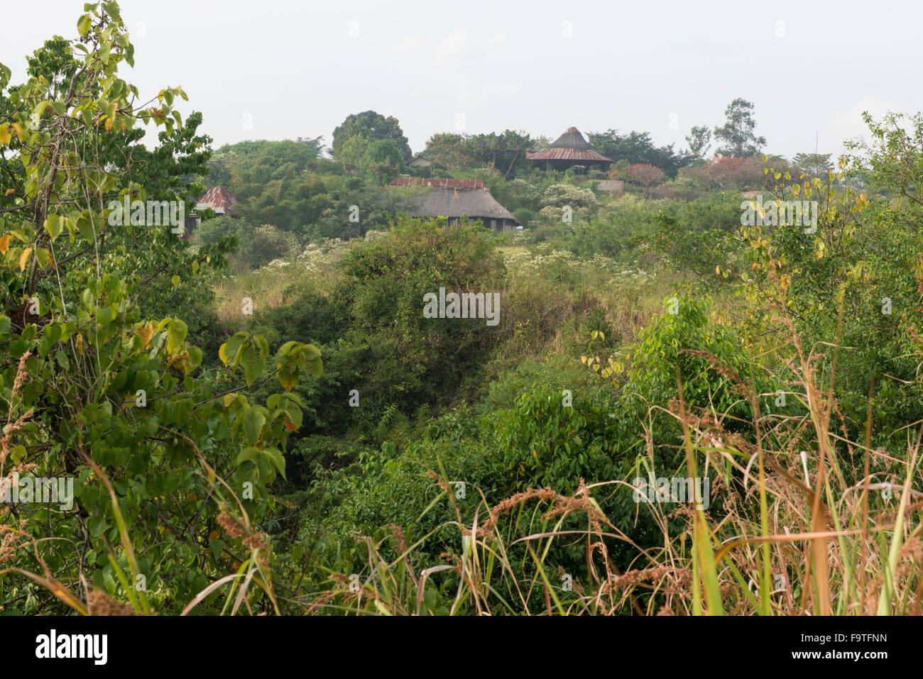 Lodge, Kyambura Kyamburu Gorge Gorge, el Parque Nacional Queen Elizabeth, Uganda Imagen De Stock
