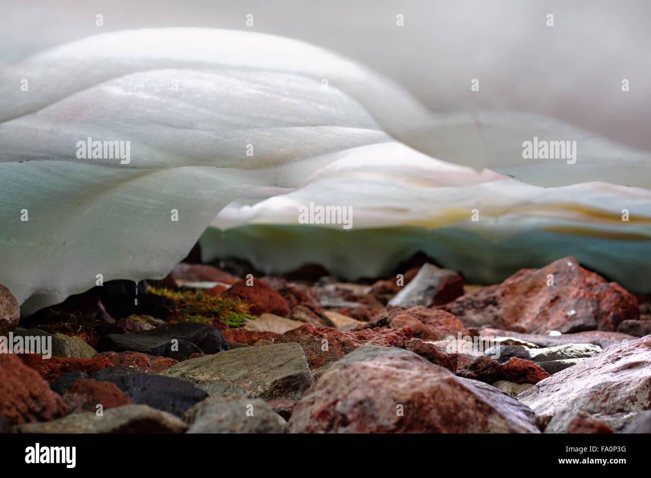 Goteo de agua de fusión bajo el campo de nieve sobre las rocas, Spray Park, el Parque Nacional Monte Rainier, Imagen De Stock