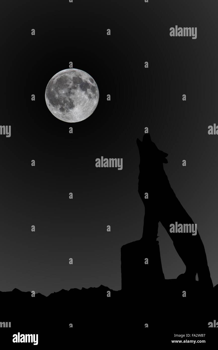 Lobo Aullando A Una Luna Llena Foto Imagen De Stock 92262219 Alamy