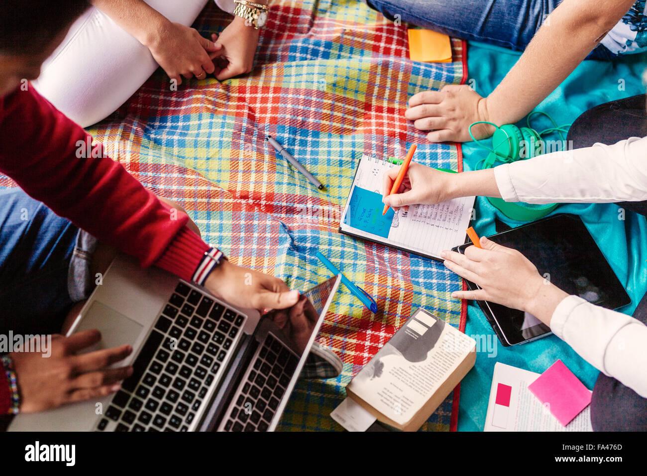 Un alto ángulo de vista de amigos estudiando en park Imagen De Stock