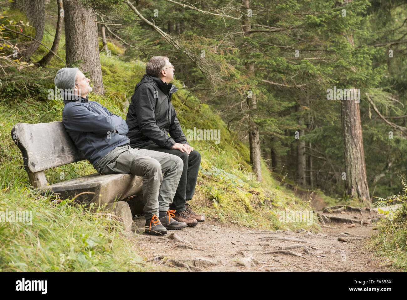 Dos excursionistas madura descansando sobre banco en bosque, Alpes Austríacos, Carintia, Austria Imagen De Stock