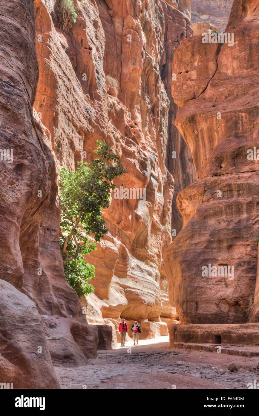 Los turistas que caminan a través de los SIG, Petra, Jordania Imagen De Stock