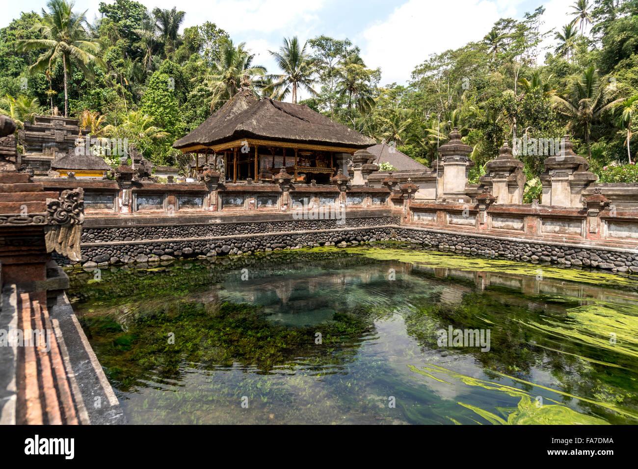 Muelle del santo templo del agua Tirta Empul hindú cerca de Ubud, Bali, Indonesia Imagen De Stock