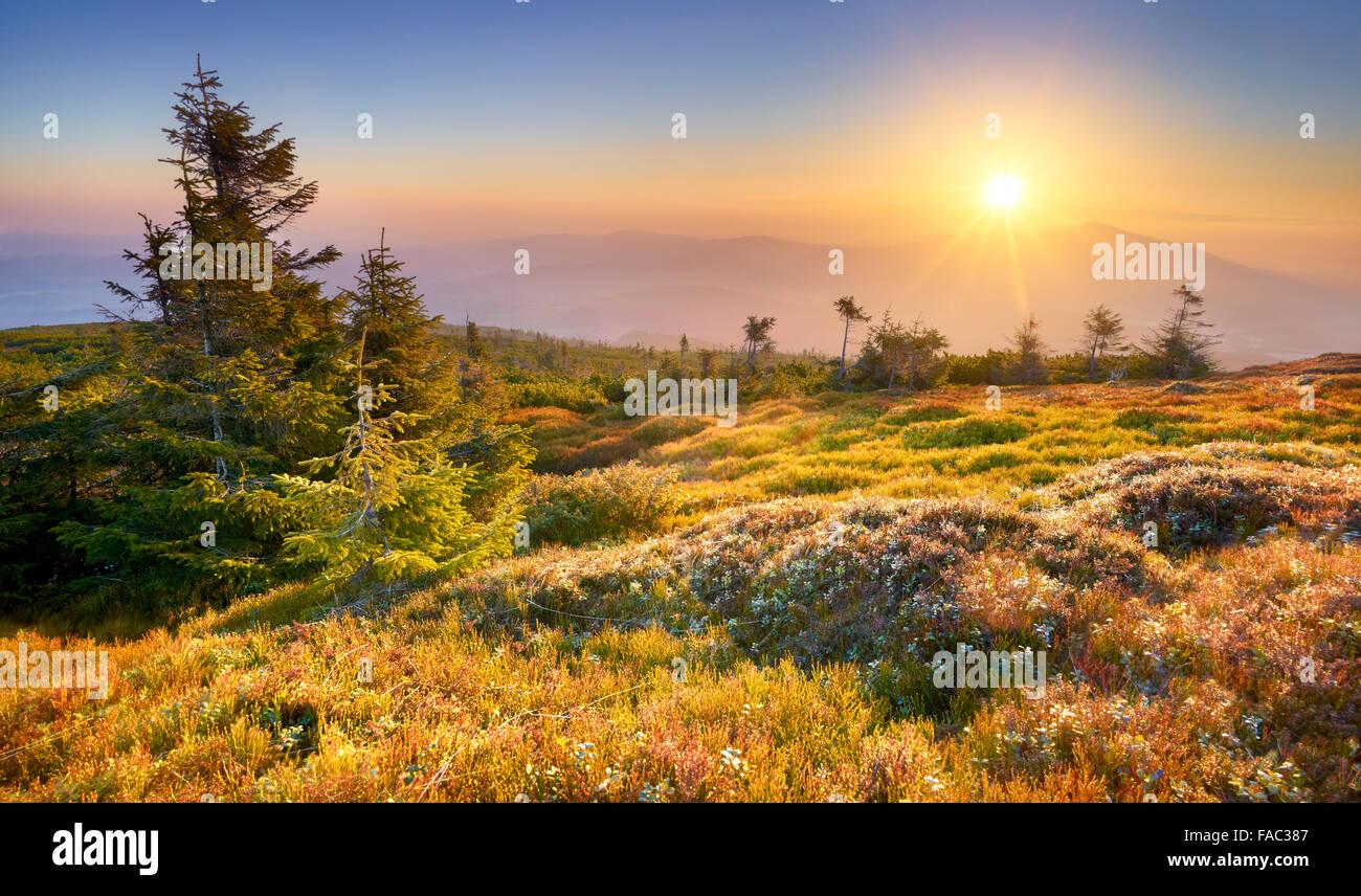 Montañas Beskidy, atardecer en el pico Pilsko, Polonia Imagen De Stock