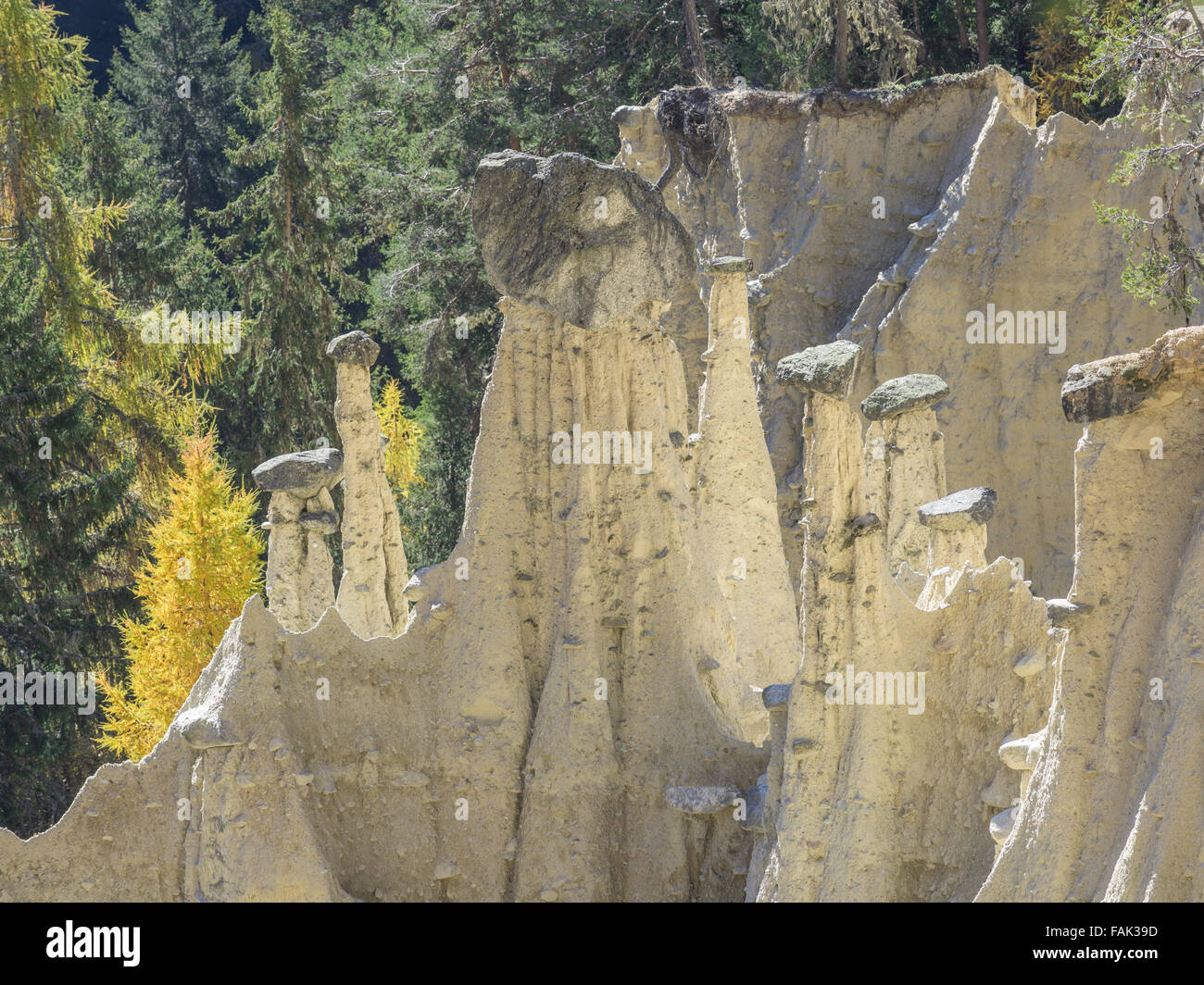 Pirámides de tierra de gutapercha, Tirol del sur, Italia Foto de stock