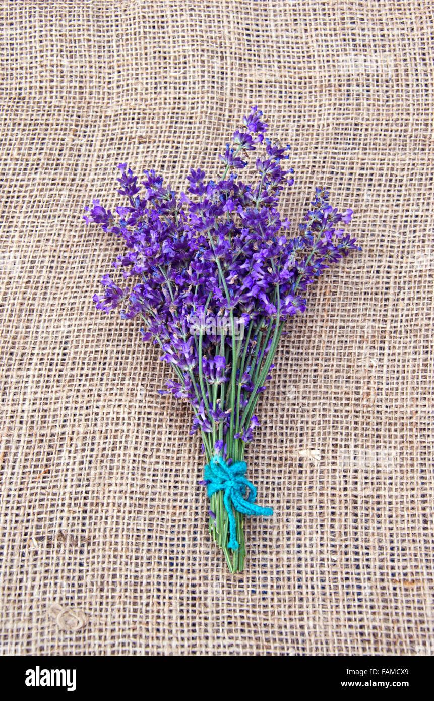 Montón de violeta lavanda atados con una cuerda colocado en tela de lino Imagen De Stock