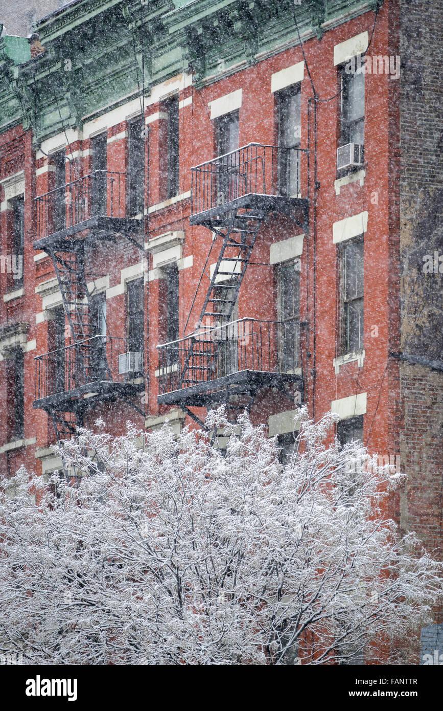 Árbol cubierto de nieve en la parte delantera de un edificio Hells cocina con fuego escapar durante una tormenta Imagen De Stock