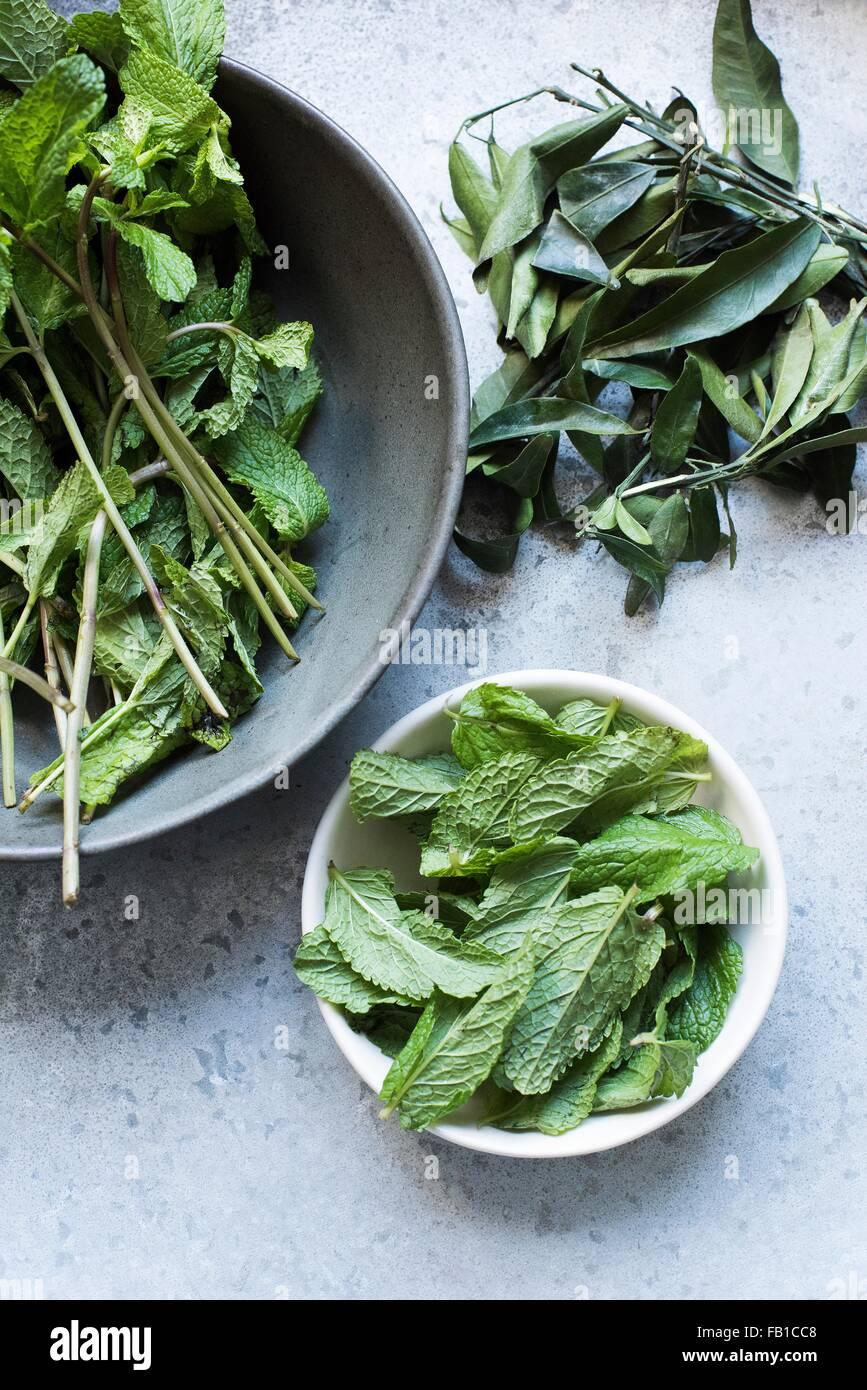 Vista aérea de hojas de menta en cuencos Foto de stock