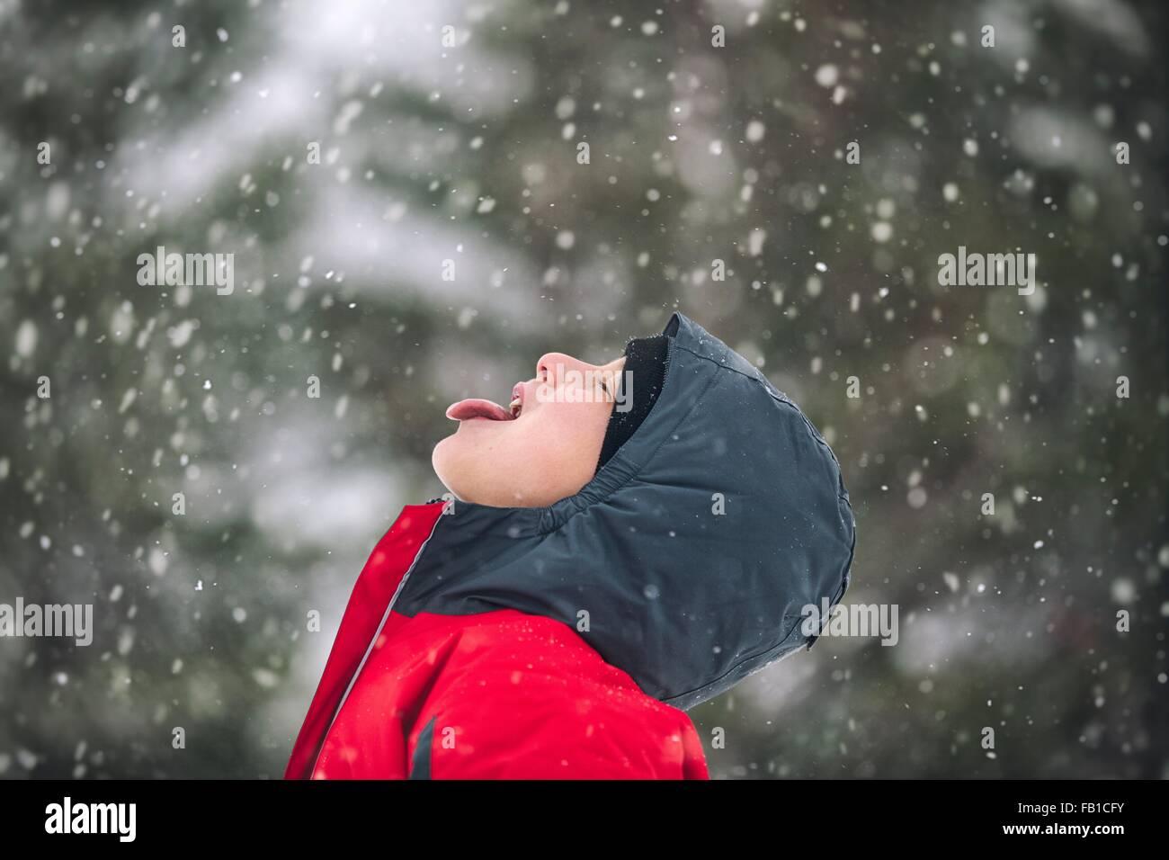 Vista lateral del niño fuera la lengua atrapar los copos de nieve Imagen De Stock